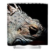 Scales And Spikes Shower Curtain