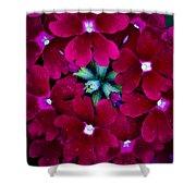 Scarlet Bouquet  Shower Curtain