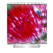 Scarlet Sabers Shower Curtain