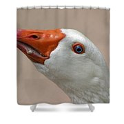 Scary Goose Shower Curtain
