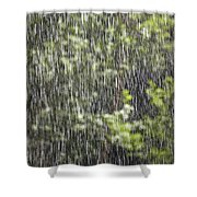 Scenic View In Zion National Park Shower Curtain