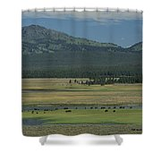 Scenic Wyoming Landscape With Grazing Shower Curtain