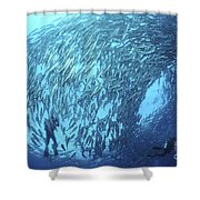 School Of Jacks And Divers At Liberty Shower Curtain