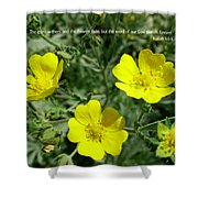 Scriptue And Picture Isaiah 40 8 Shower Curtain