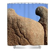Sculpted Rock Shower Curtain