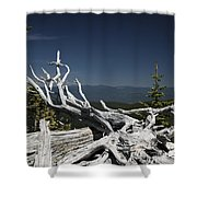 Sculpture By Mother Nature Shower Curtain