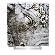 Sculpture Of Bull, Temples Of Apollo Shower Curtain by Carson Ganci