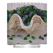Sea Glass In Clam Shell - No 1 Shower Curtain