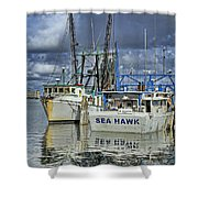 Sea Hawk Under Cover Shower Curtain