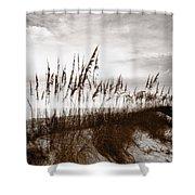 Sea Oats 1 Shower Curtain