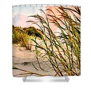 Sea Oats And Dunes Shower Curtain by Kristin Elmquist