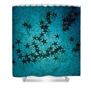 Sea Stars At Gordon Rocks Shower Curtain