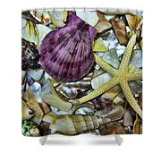 Sea Treasure - Landscape Shower Curtain