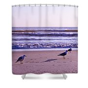 Seagull Alliance Shower Curtain