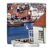 Seagull At Whitby Harbor Shower Curtain by Axiom Photographic