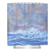 Seagulls At Play Shower Curtain