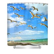 Seagulls At Worthing Sussex Shower Curtain
