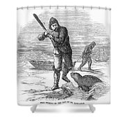 Seal Hunting, 1867 Shower Curtain