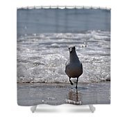 Seascape 85 Shower Curtain
