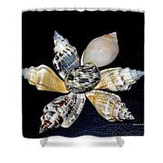 Seashell Floral Shower Curtain