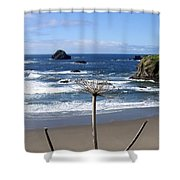 Seaside Solitude Shower Curtain
