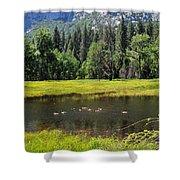 Seasonal Duck Pond Shower Curtain