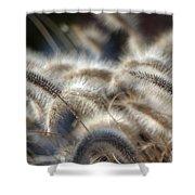 Seasonal Softness Shower Curtain