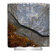 Seaweed And Rock Shower Curtain