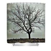 Secrets Of The Roots Shower Curtain
