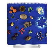Seed Diversity, Barro Colorado Island Shower Curtain