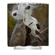 Seed Face Shower Curtain