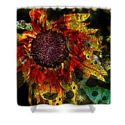 Seeds To Sun Shower Curtain