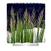 Seedy Grass Shower Curtain