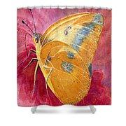 Self Esteem Butterfly Shower Curtain
