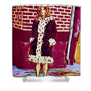 Self Paintlet 1975 Shower Curtain