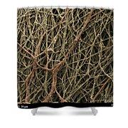 Sem Of Mycelium On Mushrooms Shower Curtain