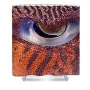 Sepia Cuttlefish Shower Curtain
