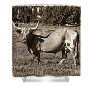 Sepia Longhorn Cow Shower Curtain
