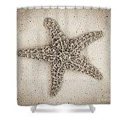 Sepia Starfish Shower Curtain