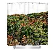 September Palate Shower Curtain