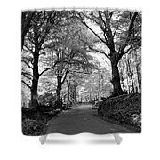 Serene Winding Country Road Shower Curtain