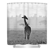 Serengeti Morning Shower Curtain