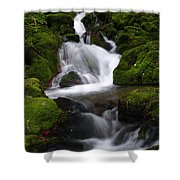 Series Of Falls Shower Curtain