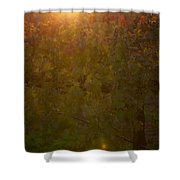 Setting In The Vines Shower Curtain