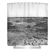 Shackleford Banks Camping Shower Curtain