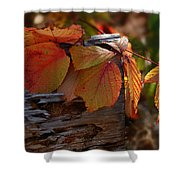 Shade In Fall Shower Curtain