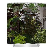 Shaded Colors Shower Curtain