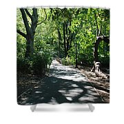 Shaded Paths In Central Park Shower Curtain