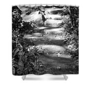 Shaded Steps Shower Curtain