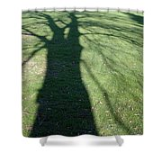 Shadow Of A Tree On Green Grass Shower Curtain